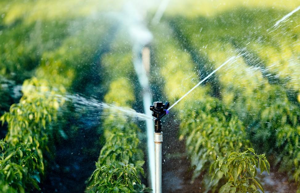 Ansiedlung in Ost-Frankreich: Pôle Hydreos: der Wettbewerbscluster für die Wasserwirtschaft initiiert innovative Projekte der mit dem Wasser verbundenen Unternehmen. (#1)