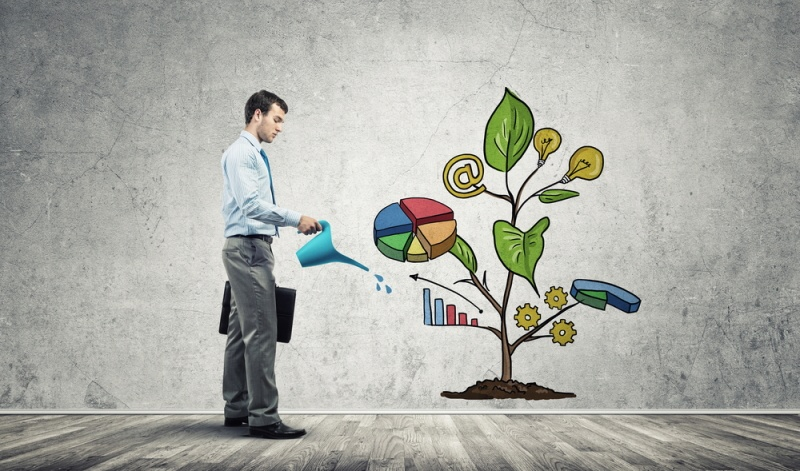 Nachhaltigen Geldanlagen konnten mit einem Zuwachs von 43 Prozent klar zunehmen und steigern somit von Jahr zu Jahr ihr Potenzial.