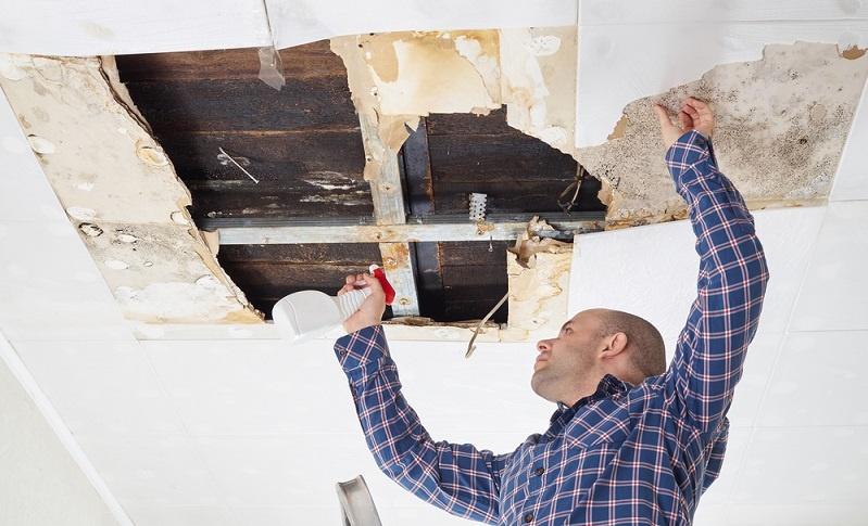 Um förderfähig zu sein, muss das Haus nach dem Umbau gewissen Richtlinien entsprechen.(Fotolizenz-Shutterstock: _volkovslava)